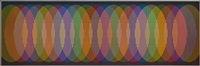 physichrome 1877 by carlos cruz-diez