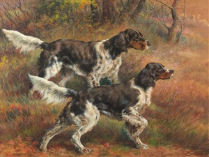 english setters by edmund henry osthaus