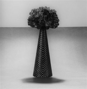 robert mapplethorpe sell the public flowers by robert mapplethorpe
