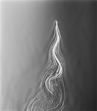 untitled by adam fuss