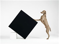constructivism by william wegman