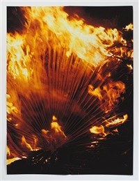 (burning palm fronds) by jack pierson