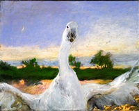 the angered swan by jamie wyeth