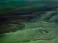 oil spill #16, mississippi delta, gulf of mexico, june 24 by edward burtynsky