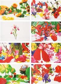 winter garden (portfolio of 8 prints) by marc quinn