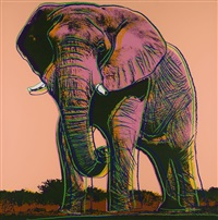 african elephant, from endangered species ii fs ii.293 by andy warhol