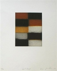 red fold by sean scully