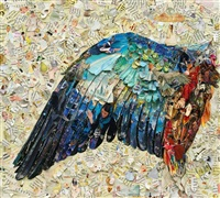 wing of a blue roller after albrecht dürer, (pictures of magazine 2) by vik muniz