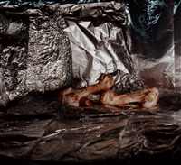 still life with chicken bones by clegg & guttman