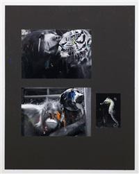 bär / tiger by henrik olesen