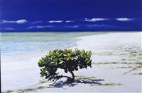 maldive (2102 q) by fabio aguzzi