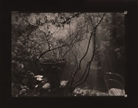 the magic garden (of architect otto rothmayer) during a summer shower by josef sudek