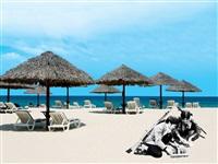 laying punji stake trap, furama resort - da nang by dinh q. lê