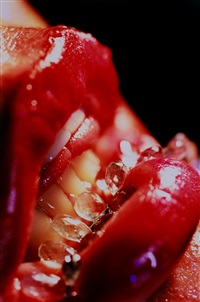 bridle by marilyn minter